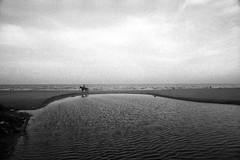 * (-nasruddinmukhtar-) Tags: blackandwhite bw horse beach monochrome analog 35mm seaside shoreline malaysia analogue 135 nikonfm2 pantai kelantan モノクロ 白黒 bachok fujifilmneopanpresto400 pantaiirama nasruddin nasruddinmukhtar nipponkogakunikkorud20mmf35