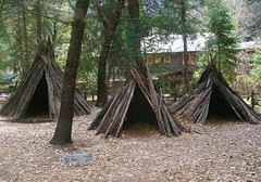 Tribe (intothemoonlight) Tags: california wood houses home nature indian tribal huts nativeamerican hut yosemite indians teepee tribe ynp teepees