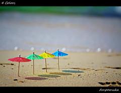 4 Colors / สี่สีสิ (AmpamukA) Tags: travel blue red sea color cute green beach yellow umbrella four kid sand bokeh small 4 mini row line cocktail tiny ทะเล ร่ม ชายหาด เล็ก โบเก้ ampamuka ค็อกเทล