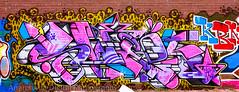 05222012 04 (Anarchivist Digital Photography) Tags: graffiti murals denver swek