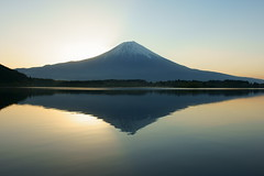 Mt.Fuji reflection (peaceful-jp-scenery) Tags: sony explore   mtfuji      laketanuki dslra700 minoltaaf20mmf28new