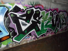 Zerv (EveryDayCriminals) Tags: graffiti edc fea zerv
