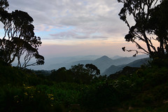 The last night on the Rwenzori (supersky77) Tags: africa sunset haze tramonto uganda foschia rwenzori rwenzorinationalpark kilembe kalalama kilembetrail