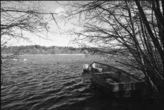 Whitlingham (ihavenowords) Tags: uk trees england white lake black film canon river landscape eos mono boat spring scenery natural 10 5 norfolk peaceful row norwich april rowing epson 100 10th analogue broad ilford eos5 drifting secluded foma ef1740f4l whitlingham 2016 trowse ddx fomapan 4490