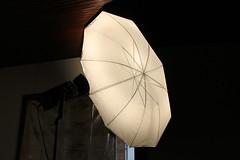 IMG_2944 (almacolectiva) Tags: light detalle luz contraluz dark room sombra estudio reflejo contraste iluminacion iluminaciondeestudio sombrillafotografica sombrillareflectora