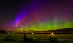 Sky Gazing (Greg Lundgren Photography) Tags: green nature wisconsin night landscape outdoors purple magenta aurora nightsky northernlights auroraborealis