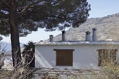 Entre el cielo y el suelo. (elojeador) Tags: ventana casa persiana rbol antena parra pino tronco chimenea lasalpujarras emparrado elojeador caileira contendenciaaquedarmecalvo