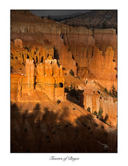 Towers of Bryce (Lights | Camera | Action Photography) Tags: light sunset usa storm america landscapes utah rocks unitedstates rocky land bryce brycecanyon sidelight