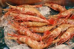 IMG_5907 (tsaaby) Tags: japan fishmarket fisk fiskemarked tmfstudietur