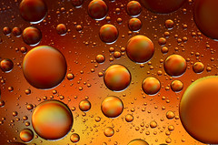 oil in water (glendamaree) Tags: abstract macro water oil macrophotography oilandwater nikond7000