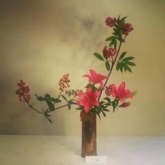 Reiko's #ikebana