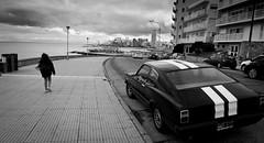 Free Walk (Fer Gonzalez 2.8) Tags: street leica bw cars blackwhite walk mardelplata mdq monocrhome leicadlux4