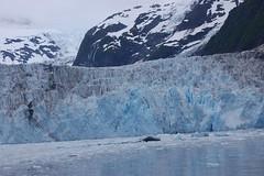 cep-dsc_0440 (honeyGwhiz) Tags: alaska glaciers princewilliamsound fjord floatingice miniicebergs