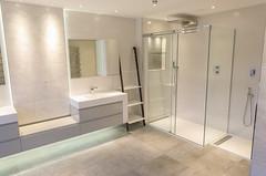 3L5A6472 (terrygrant1) Tags: bathroom porcelain tiling