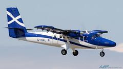 G-HIAL DHC-6-400 Twin Otter Loganair (kw2p) Tags: aircraft airlineoperator airport aviation dhc6400twinotter dehavillandcanada egpf egpfgla ghial glasgowairport loganair cn917 paisley scotland unitedkingdom gb