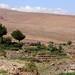 11 Atacama Socaire