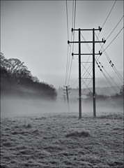Frost and morning mist beneath the crooked pylons. (Robots are Stupid) Tags: uk morning england blackandwhite bw mist cold monochrome electric misty fog danger rural river dawn sussex mono frozen nikon energy frost power westsussex britain iso400 foggy earlymorning freezing 85mm electrocution frosty farmland pylon powerlines cables electricity chilly f8 leaning crooked southdowns sunup daybreak highvoltage volts voltage midhurst rother selenium overheadcables southernelectric powercables stedham nationalgrid seleniumtoned d700 woolbeding nikond700 daviddalley davidjdalley