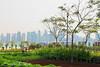 Qatar , Doha , The Pearl (Basel Al-Otaibi) Tags: قطر الدوحه اللؤلؤه كاون سيقما