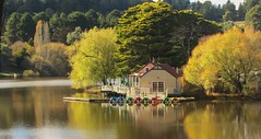 BOATHOUSE REFLECTIONS (rpiker101) Tags: autumn lake reflection fall australia victoria boathouse paddleboat daylesford centralhighlands centralvictoria lakedaylesford
