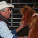 James Cannard of Sonoma and his miniature horse Peanut Butter.Mini Horse demonstration