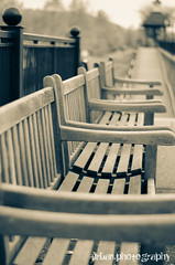 row for resting (Urban.Photography) Tags: blackandwhite bw vanishingpoint bokeh pennsylvania repetition splittone oakmont unanimouswinner thechallengefactory