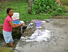 Do the washing . (Franc Le Blanc .) Tags: bali woman lumix ditch candid panasonic wash laundry streetphoto cuci