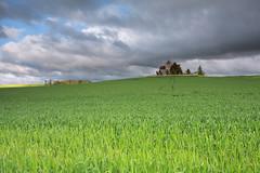 La Genevraye (JMS') Tags: landscape champs lee fields paysage sigma1020 leefilters lagenevraye 09ndgrad
