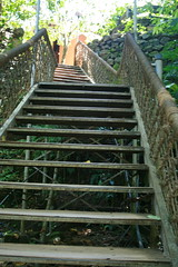 Stairway to Heaven... (rednivaram) Tags: kerala wayanad vythri