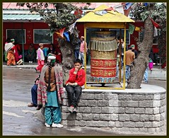 Tibeti Prayer Wheel at Recong Peo Bus Stand (Indianature4) Tags: india mountains hp april himachal himalayas 2012 himachalpradesh kinnaur peo indianature recongpeo snonymous himachalkinnaur himachalkalpa