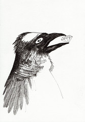 diamant-kraai (bezembinder) Tags: drawing sketchbook moleskin rotring bezembinder 005mm
