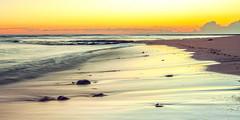 ~ b l u s h ~ (James.Breeze) Tags: ocean longexposure seascape beach water sunrise landscape sand rocks raw waves seascapes sydney australia nsw breeze saltwater longreef northernbeaches beachsunrise canonef1740mmf4l bestofaustralia jamesbreeze