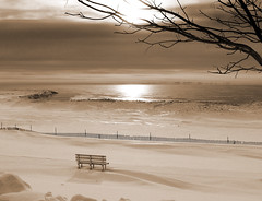 Winter Beach Morning - sepia
