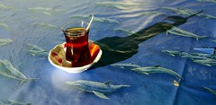 Teeglas (captain.orange) Tags: shadow sea cup turkey meer tea dolphin trkei tablecloth delfin tee schatten glas tr konya tischtuch yenibahe mersiniel