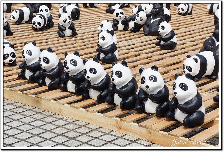 1600貓熊世界之旅 (28)