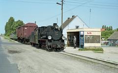 img344 (Kruiskop) Tags: poland steam polen locomotive narrowgauge poznan gniezno posen wolsztyn ol49 grodzisk su45 steszew gniesno gnieźnieńskąkolejwąskotorową gnieznonarrowgaugerailway