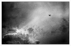 L'envie de voyage (Punkrocker*) Tags: leica travel sky cloud film plane 50mm kodak trix nb ciel zen 400 konica nuages avion m7 502 hexanon bwfp