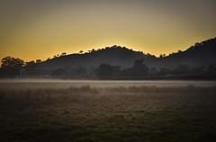 First Light (phunnyfotos) Tags: morning mist field misty fog skyline rural sunrise landscape dawn spring nikon farm farming foggy australia victoria farmland hills d750 vic paddock firstlight wodonga northeastvictoria bandiana phunnyfotos nikond750