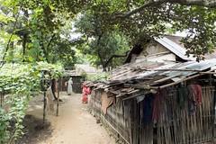 H504_3301 (bandashing) Tags: england people house building festival manchester shrine village hill huts sylhet bangladesh socialdocumentary crude mazar aoa shahjalal bandashing akhtarowaisahmed treecuttingfestival