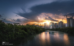 The New Neighbourhood (lovedove_ken) Tags: singapore sun river plantation forest park water building residential cranes sengkang landscape