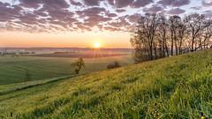 Sunrise over Illertissen 2 (Sebo23) Tags: sonnenaufgang sonnenstrahlen sunrise clouds wolken morgenstimmung illertissen gras tautropfen canon6d canon24704l
