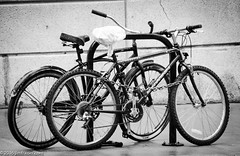 Bike Rack (Jim Frazier) Tags: city urban chicago wet rain bike illinois spring downtown loop wheels il chain rainy rack april locked moisture frontier 2016 jimfraziercom