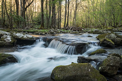 Tremont (Jeremy Duguid) Tags: park travel trees mountain mountains nature water beauty river outdoors long exposure hiking cove tennessee pigeon south great fork jeremy hike rapids tenn southern national cascades gatlinburg smoky southeast middle smokies tremont cades duguid gsmnp