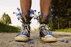 The really beautiful things are where I am standing (Marek Kalich) Tags: flowers blue light summer stilllife flower nature colors outdoors boot spring shoes legs grow dirty dirt converse exlore