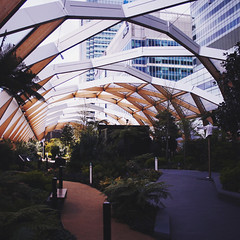 Roof Garden (Olly Denton) Tags: uk roof plants london apple lines architecture modern publicspace canon garden mac open perspective palm tropical greenery canarywharf ios pathway noroof vanishingpoints 400d canon400d vsco vscocam crossrailroofgarden vsoclondon