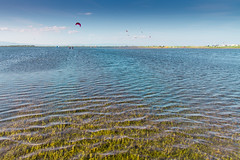 Delta de l'Ebre - Kite Surf (Carles Bravo) Tags: ri kite river surf artistic delta ebro ebre