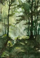 Przewity (Caro84) Tags: las water forest watercolor painting paint aquarelle poland polska polish polen watercolour acuarela polonia obraz aquarela pologne aquarell acquerello polsko akvarell  akvarel  akwarela
