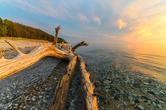 Firebreather (Aaron Springer) Tags: beach nature water landscape outdoor michigan shoreline lakemichigan driftwood lakeshore northernmichigan thegreatlakes
