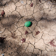 Land Before Time (BurlapZack) Tags: easter square dino dinosaur egg ground dirt raptor crop velociraptor easteregghunt jurassicpark easteregg pack01 dentontx landbeforetime mckennapark vscofilm osdhcp oakstreetdrafthousecocktailparlor olympusomdem5markii olympusmzuikoed1250mmf3563ez