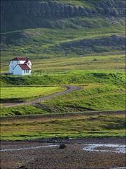 Path... (mau_tweety) Tags: verde green church grass iceland sheep path meadow chiesa erba fields sentiero prato vestfirir pecore campi breiafjrur