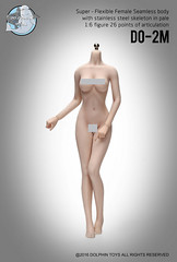 DOLPHIN TOYS DO-2M Stainless  Seamless Female Mid Bust Pale Body - 08 (Lord Dragon ) Tags: hot female toys actionfigure doll seamless onesixthscale 16scale dolphintoys 12inscale
